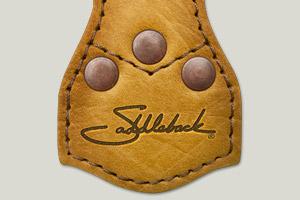 http://www.leatherhelp.com/wp-content/uploads/2010/02/sbllogo300x200.jpg